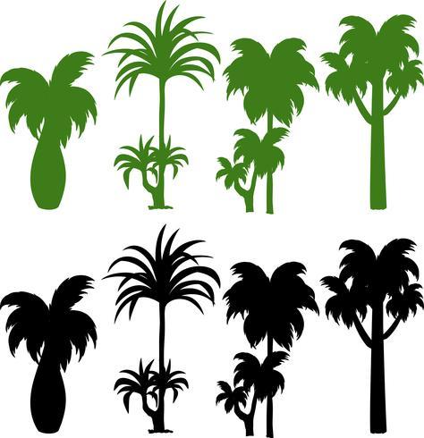 Conjunto de silueta de palmera vector