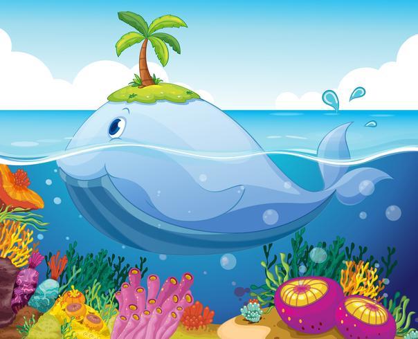 Pez, isla y coral en el mar.