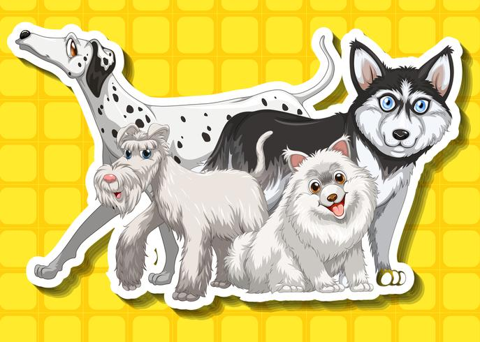 Four cute dogs on yellow background vector