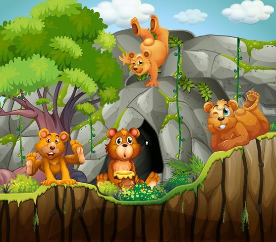 Quattro orsi che vivono nella grotta vettore