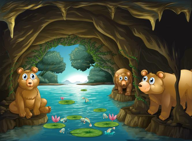 Three bears living in the cave