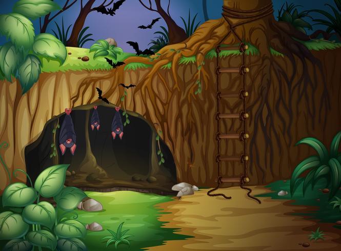 Una cueva y murciélagos vector