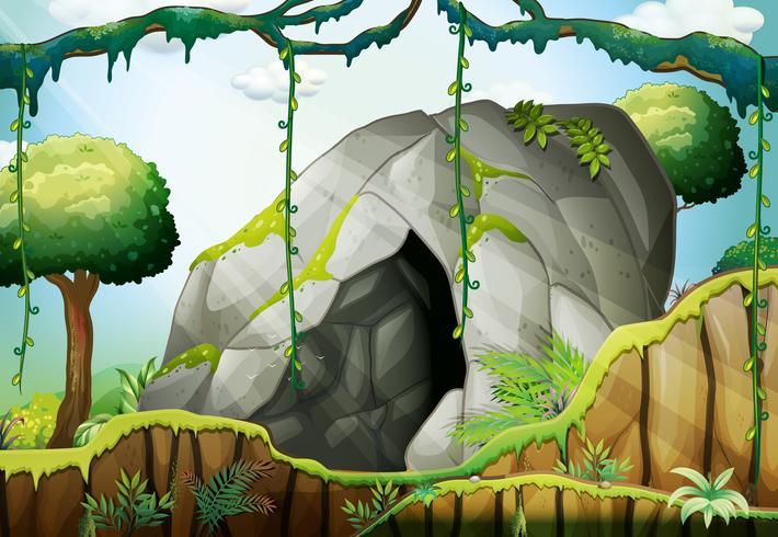 Grot in het diepe bos