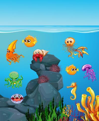 Animales marinos nadando bajo el mar vector