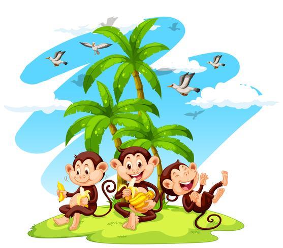 Tres monos comiendo bananas vector