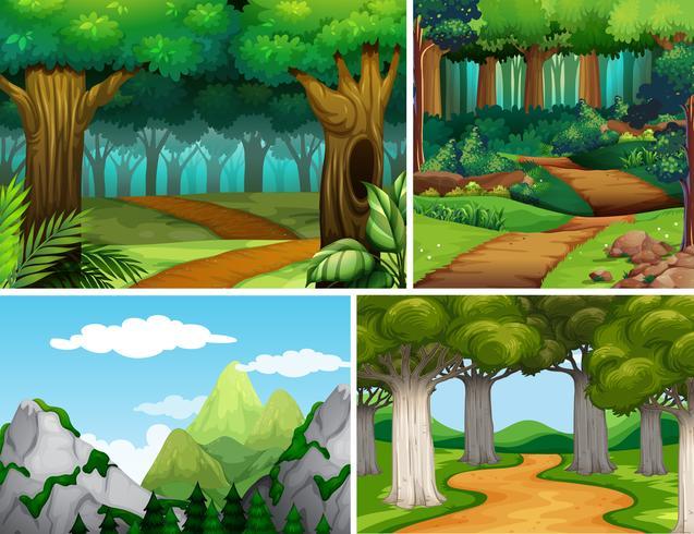 Quatro cenas da natureza com floresta e montanha