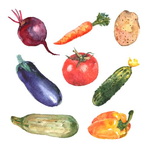 Akvarellgrönsaker Set vektor