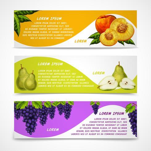 Collection de bannières de fruits mélangés vecteur