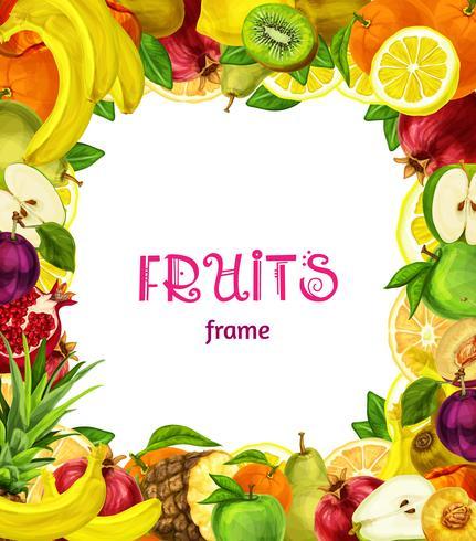 Cadre de fruits exotiques vecteur