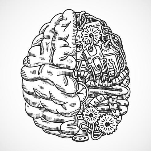Hersenen als verwerkingsmachine