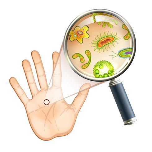 Vergrootglas bacteriën en viruscellen vector