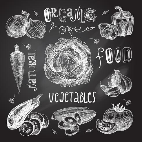 Boceto de verduras set de pizarra vector