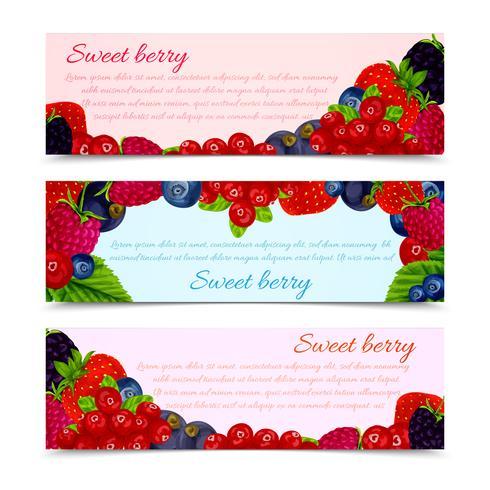 Berries banners set horizontal