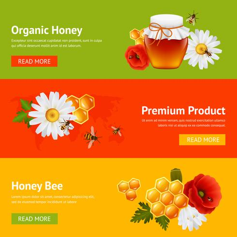 Set di banner di miele vettore
