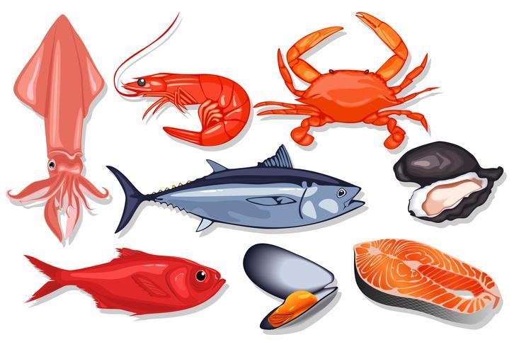 Diferentes tipos de pescados y mariscos frescos.
