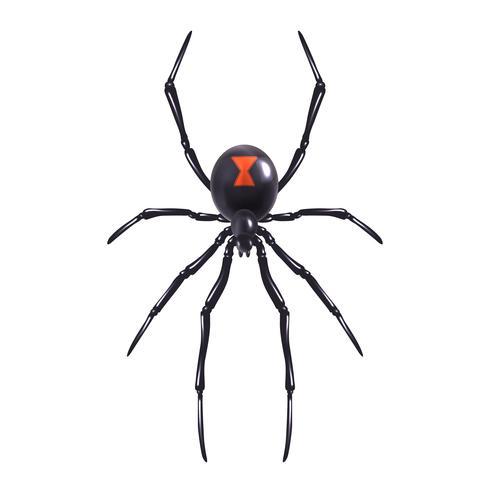 Aranha realista isolada