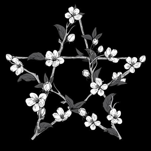 Pentagramteken met takken van een bloeiende boom wordt gemaakt die. Hand getekend botanische witte bloesem op zwarte achtergrond.