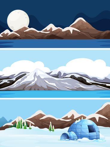 Set van winterlandschap