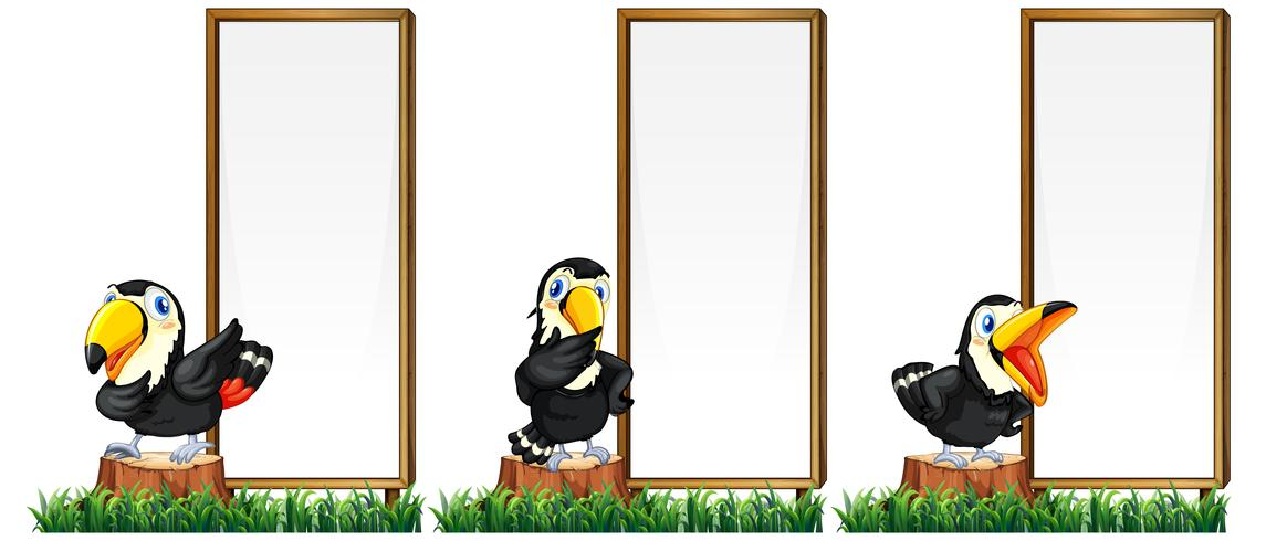 Border template with toucan birds vector