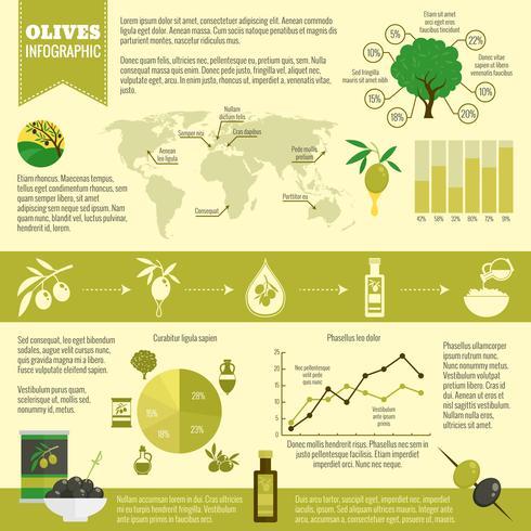 Olives infographics set