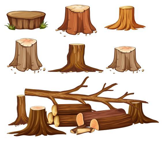 Eine Abholzung