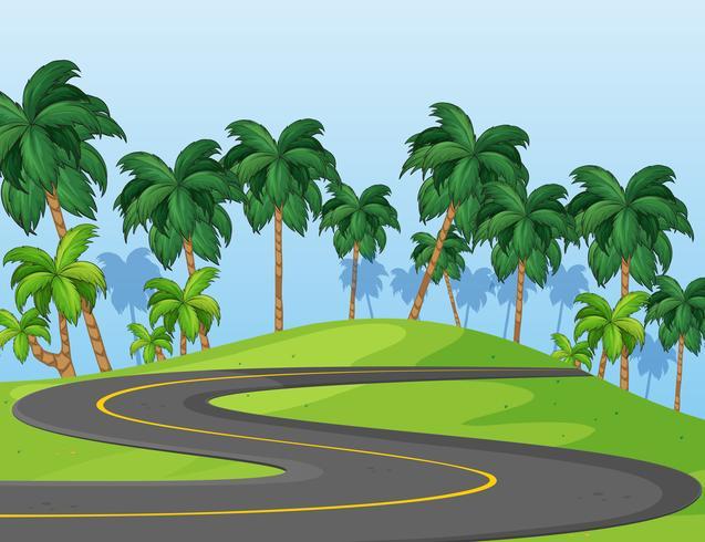 Carretera curva en el parque vector