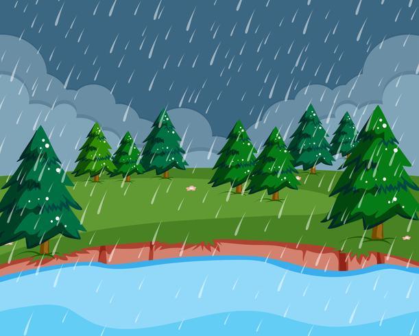 Een regenscène in de natuur