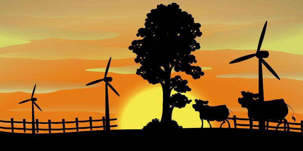 Bakgrundsscen med kor på gården