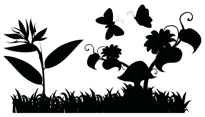 Silhuett trädgårdsplats med fjärilar