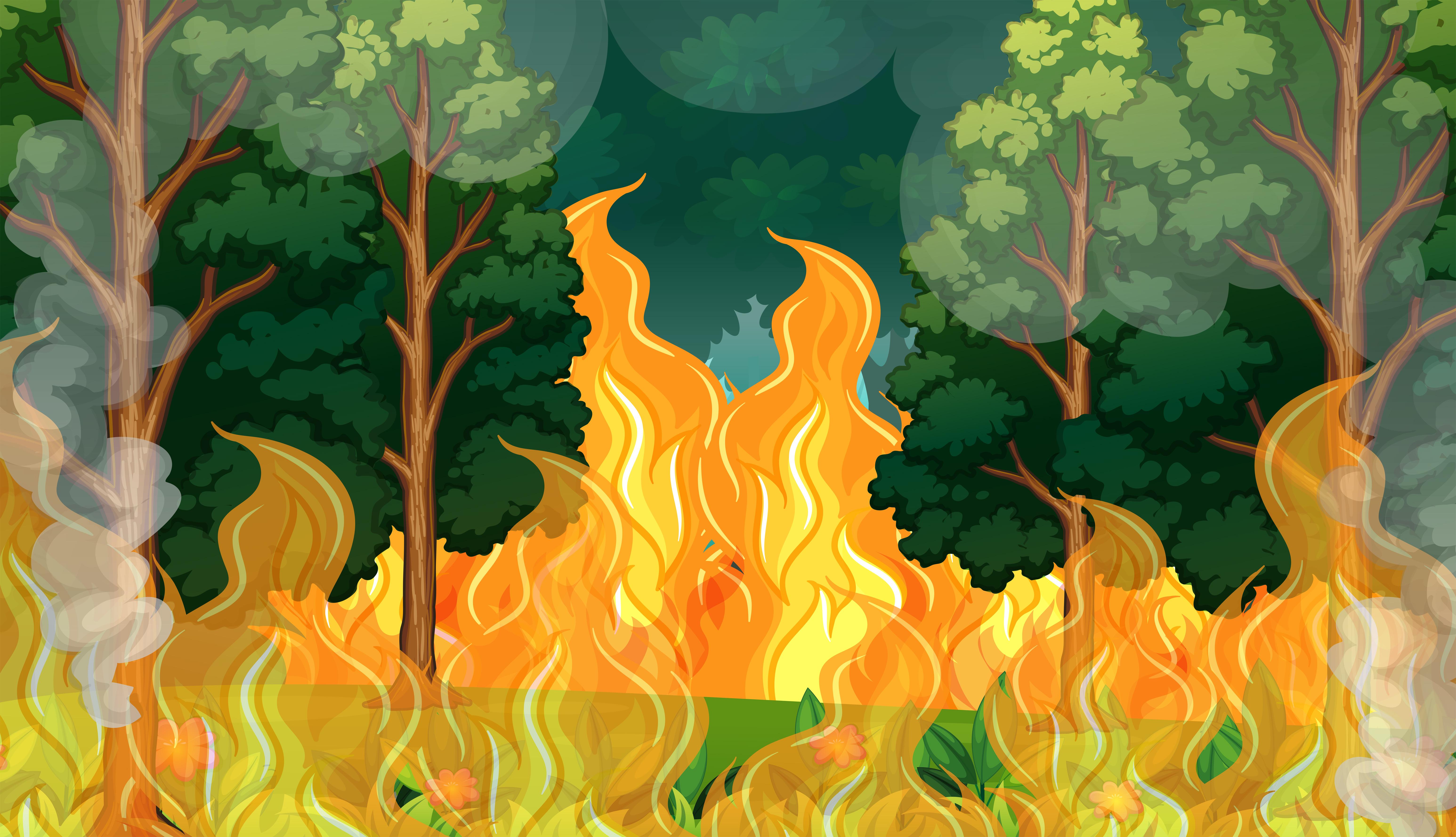 Картинка пожар леса для детей
