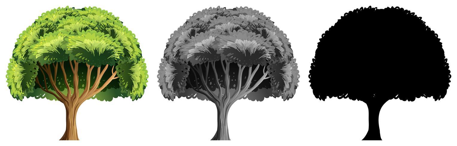 Sats med stor träddesign