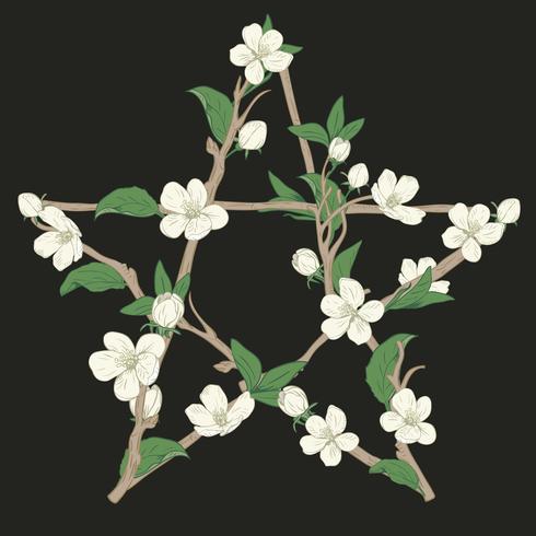 Pentagramskylt gjord med grenar från ett blommande träd. Handdragen botanisk vitblomma på svart bakgrund.