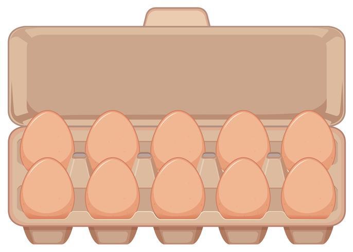 Isolerat ägg i kartong