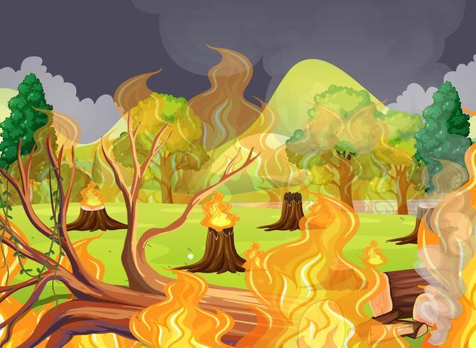 Um incêndio florestal assustador