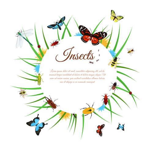 Ilustración de fondo de insectos vector