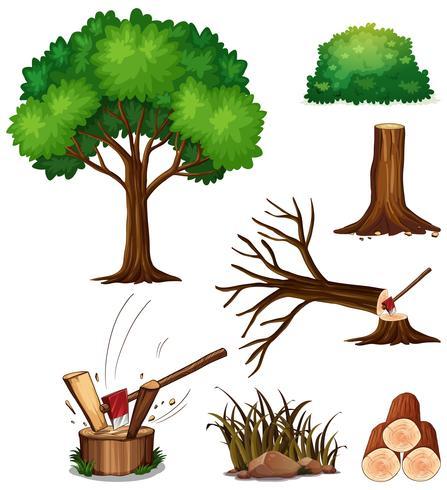 Un set di alberi da taglio