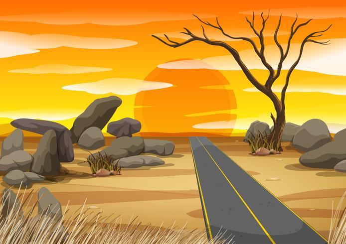 Lege weg in de woestijn bij zonsondergang