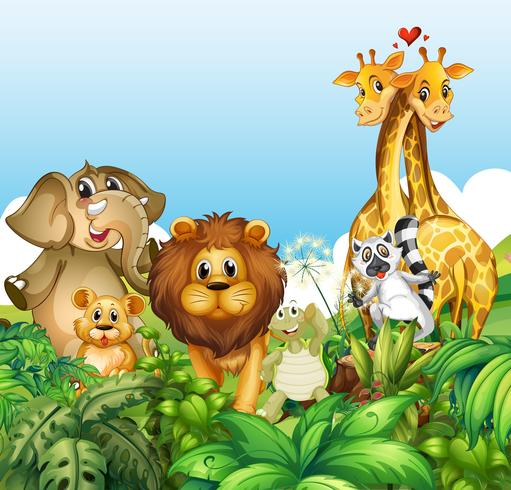 Felices animales salvajes en el bosque