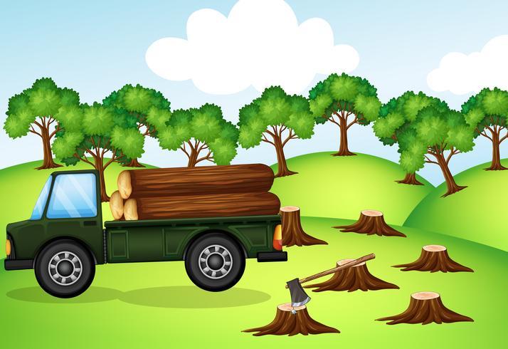 Escena de deforestación con camión cargado de troncos.