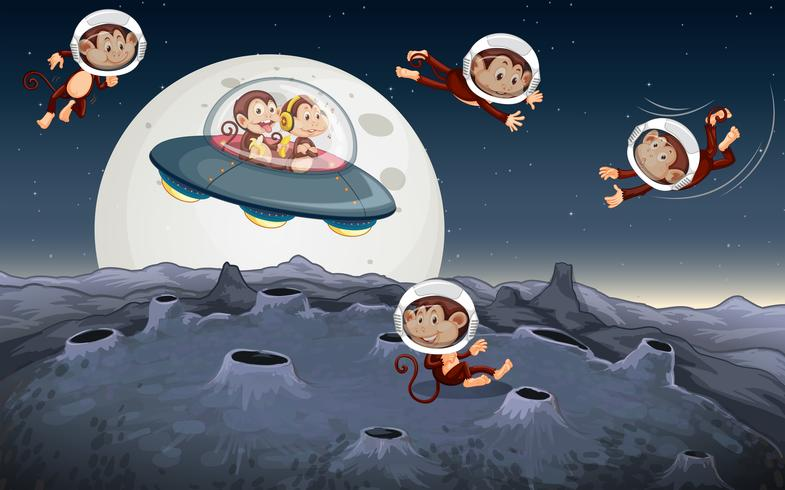 Monkey travel in space