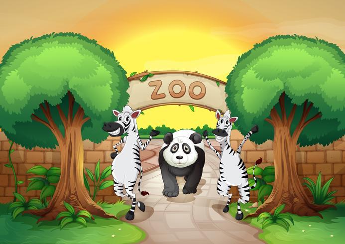 een dierentuin en de dieren