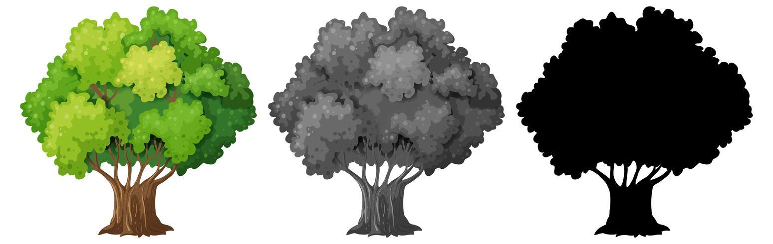 Sats av isolerat träd