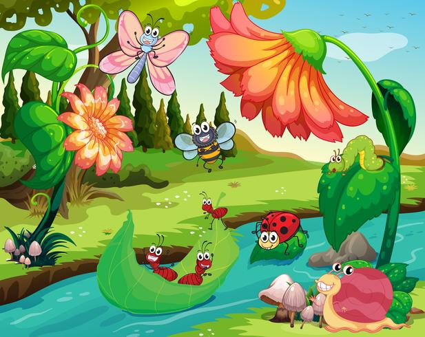 Muitos insetos que vivem no rio