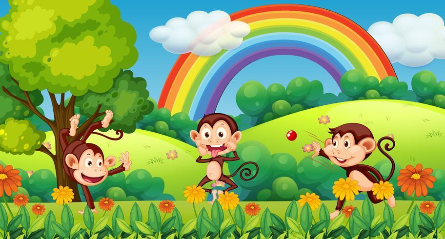 Mono jugando en el bosque
