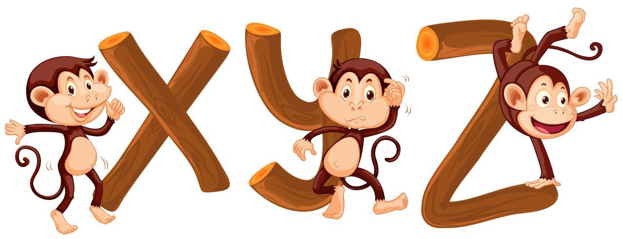 Alfabeto di scimmia e legno