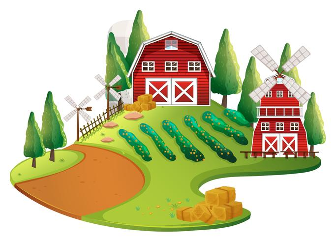 Farm scene with crops and barn