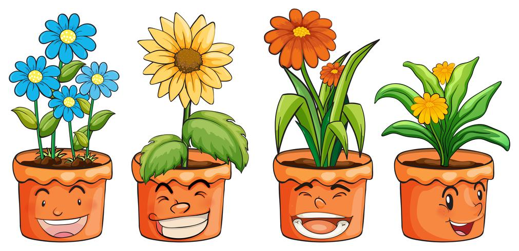 Cuatro macetas de flores