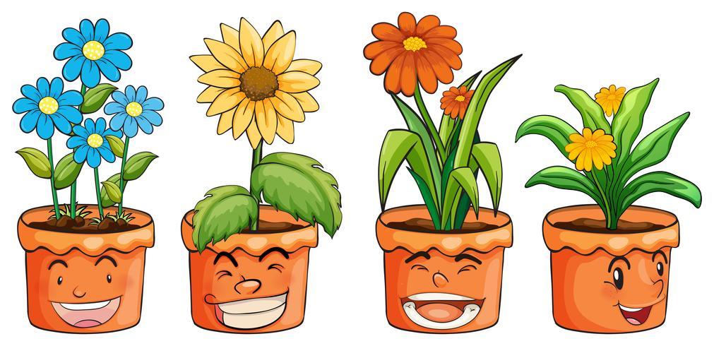 Four pots of flowers vector