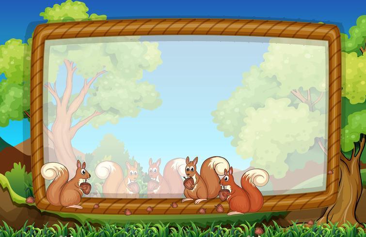 Modelo de quadro com esquilos no parque