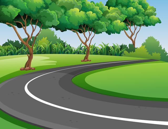 Scène avec route dans le parc